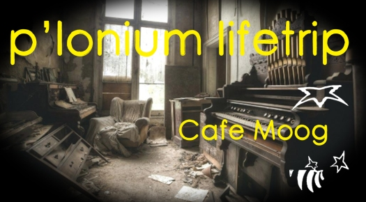 P-lonium Lifetrip medium- Cafe Moog