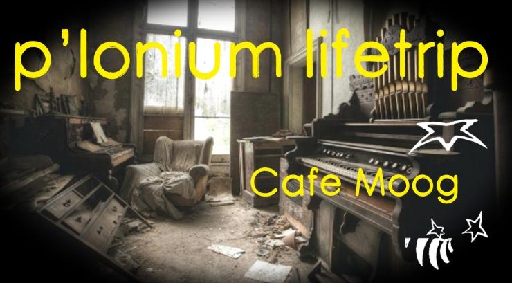 P-lonium Lifetrip medium- Cafe Moog